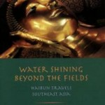 B_water-shining-beyond-fields-john-brandi-paperback-cover-art